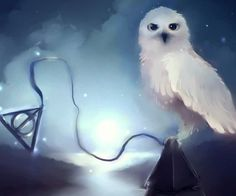 It is that Hedwig...