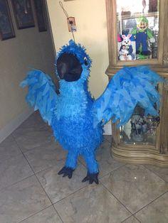 Rio Piñata for my sons Rio themed party