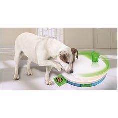 PAWISE Jucărie pentru câini \Dog Training\