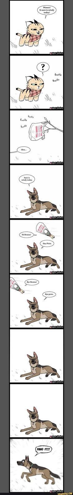 Funny Animal Comics, Cat Comics, Funny Animal Memes, Cute Funny Animals, Funny Comics, Funny Cute, Really Funny Memes, Stupid Funny Memes, Funny Texts