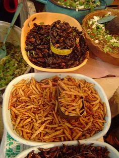 Archivo: Escamoles, chahuis, chinicuiles y chapulines.  Mercado de Tula.jpg