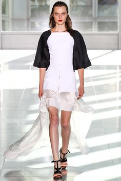 Antonio Berardi Spring 2014 Ready-to-Wear Fashion Show