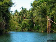 Rios e Igarapés - Ilha de Marajó (Soure - Pará) by Macapuna, via Flickr
