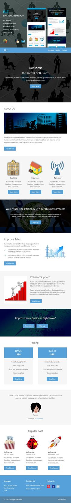 Adic  Responsive Email Template  Responsive Email