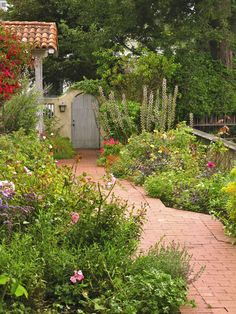 Side yard wildflower garden - so beats mowing. Outdoor Landscaping, Outdoor Gardens, Courtyard Gardens, Landscaping Ideas, Dream Garden, Home And Garden, Bungalow, Garden Pictures, Xmas Pictures