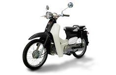 Honda Cub clone: 2010 SYM Symba $2300
