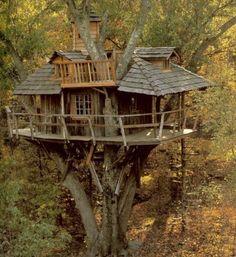 Cabane dans les arbres, cachée au fond des bois