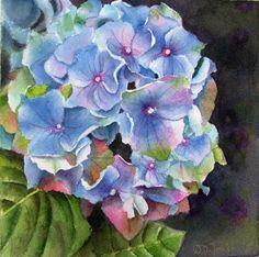 """'Blue Hydrangea 6""""x6""""'    watercolor painting  © Doris Joa"""