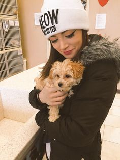 Isn't he cute? We might be adopting a dog - crissy