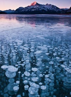 Abraham Lake, the artificial lake which lies in the foothills of the Canadian Rockies, is home to a rare phenomenon where bubbles get frozen right underneath its surface.The plants on the lake bed release methane gas and methane gets frozen once it gets close enough to the much colder lake surface. These bubbles continue to stack up through the duration of the winter season.