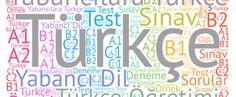Yabancılara Türkçe öğretiminde karşılaşılan sorunlar ve çözüm önerileri üzerine