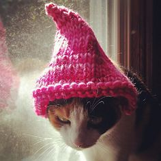 1000 images about free knitting patterns pets on - Dog hat knitting pattern free ...