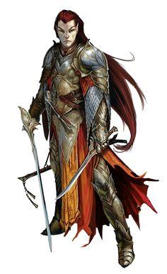 Male Elf Fighter Rogue - Pathfinder PFRPG DND D&D d20 fantasy