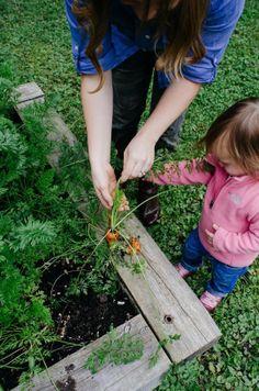 Why I Garden: Aimée of Simple Bites Talks About Children, Chickens, & Her Homestead in Quebec — Garden Tour