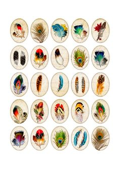 Vintage Feathers Digital Collage Sheet Oval by MobyCatGraphics