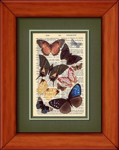 Dictionary Print  Typical Butterflies  6 3/4 x 9 by PagesOfAges, $7.00