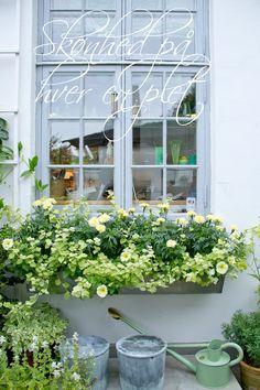Claus Dalbys garden