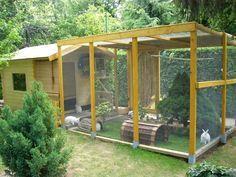Rabbit Outdoor House and Enclosure Idea