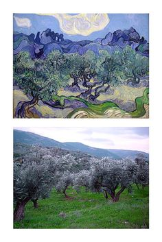 Vincent Van Gogh vs. FlickrJunkie olive trees by FlickrJunkie, via Flickr