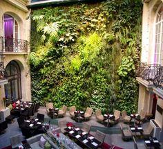 ein Cafè wie in der Natur mit vertikalem Garten zwischen Gebäuden