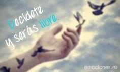 Libertad sin decisión es como un pájaro sin alas.
