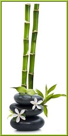 Be strong like oak and bend like bamboo