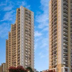 Emaar MGF Palm Heights consists ready to move retail and office space in sector 77 gurgaon. Price starting from 50 Lac. Apartment Projects, Rise Above, Car Parking, Supreme, Skyscraper, Swimming Pools, Palm, Floor Plans, Lounge