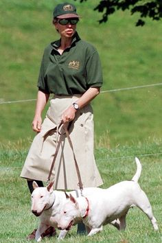 Bull Terriers and Princess Anne ... another reason why she's my favourite royal