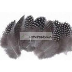Packed Guinea Feathers Loose Natural Plumage Guinea Standard Package Crafts DIY small feathers craft feathers Indiean feathers
