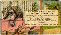Blood Purifier.  c. 1900