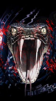 23 Super Ideas For Tattoo Snake Cobra Beautiful Snakes, Animals Beautiful, Cute Animals, Wild Animals, Snake Wallpaper, Skull Wallpaper, Snake Drawing, Snake Art, Reptiles