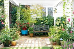 """The Patio Garden - Inspiring North Carolina Garden - Southernliving. One step down from the kitchen door on the side of the house (adjacent to the formal garden) sits this quiet space ideal for intimate conversation and daily reflection. The pergola gives a sense of enclosure while still letting light into the sheltered nook. """"The patio garden is an extension of our home for outdoor living,"""" says Christine. """"It's a quiet spot to enjoy flowers and plants."""""""