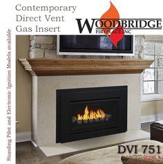 Gas Fireplace Inserts On Pinterest Fireplace Inserts