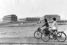 Linda Teply and Barbara Terhune ride their bikes before attending opening-day classes at UC Irvine, by Frank Q. Brown for the Los Angeles Times (October 4, 1965)