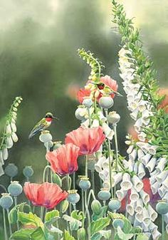 A085315841: Hummingbird Heaven #1 by Susan Bourdet