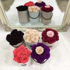 🥀 Roses In Box 🥀 Infinity Roses 🥀  #roseslover #rosesinbox #foreverroses #infinityroses #preservedroses #lastsforever #peach #peachroses #pinkrose #purpleroses #deeppurple #fuchsiaroses #colours #decoflowers #fantasy #lovetocreate #mirror #fullinlove #lovethem #lovecolors #flowershots #flowerlovers #flowersinbox #thessaloniki #floristshop #anthos_theartofflowers  Για περισσότερες πληροφορίες στειλτε μας προσωπικό μήνυμα ❤ Preserved Roses, Flower Art, Infinity, Peach, Flowers, Instagram, Art Floral, Infinite, Peaches