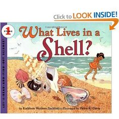 Book, What Lives in a Shell? (Let's-Read-and-Find-Out Science by Kathleen Weidner Zoehfeld