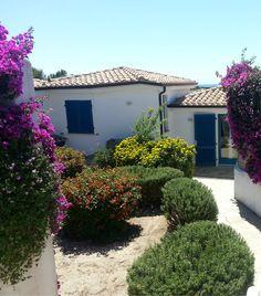 Villa Corbezzolo in #Calasetta #Sardinia from 18.07 to 25.07 euro 500. Book now!!