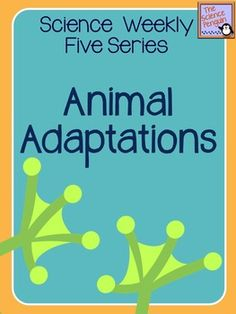 Biological Sciences:  Science Weekly Five- Animal Adaptations and Survival