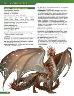 Dungeons And Dragons Classes, Dungeons And Dragons Homebrew, Dungeons And Dragons Characters, Fantasy Dragon, Dragon Art, Monster Characters, Fantasy Characters, Dnd Dragons, Dungeons And Dragons