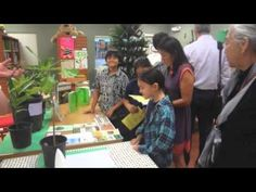PYP in Paradise!: Exhibition - The Celebration