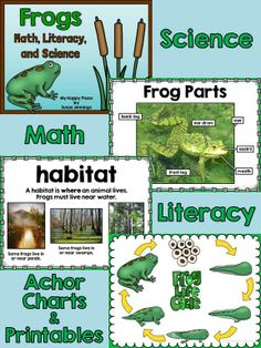 Frog Life Cycle Unit, Kindergarten, 1st Grade, Math, Writing, Science $