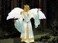 Beautiful images of angels and fairies in a slideshow set to soft music.