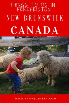 Things to do in Fredericton New Brunswick in Atlantic Canada.