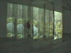 video installation - Google Search More