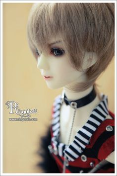 Don, 63cm Ring Doll - BJD Dolls, Accessories - Alice's Collections
