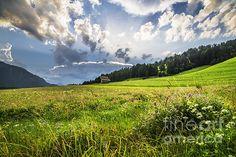 Austrian Fields by Yuri Santin