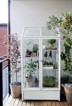 Växthus på balkongen