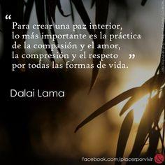 """""""Para crear una paz interior, lo más importante es la práctica de la compasión y el amor, la compresión y el respeto por todas las formas de vida.""""  Dalai Lama"""