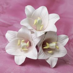 Small Open Lilies - Pink